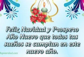 Feliz Navidad y Prospero año nuevo para ti