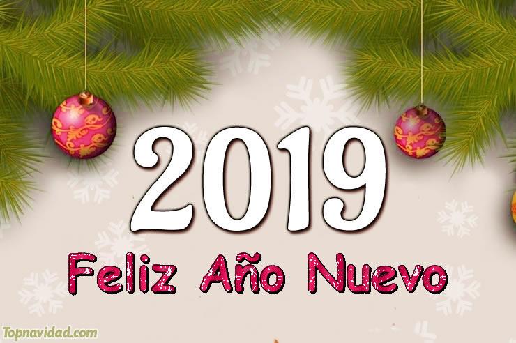 Frases de Feliz Año Nuevo 2019